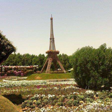 Dubai Miracle Garden: photo6.jpg