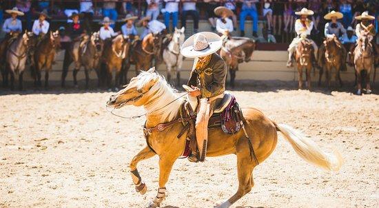 Fiesta San Antonio - A Day in Old Mexico & Charreada