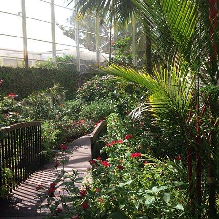 Fairchild Tropical Botanic Garden: photo5.jpg