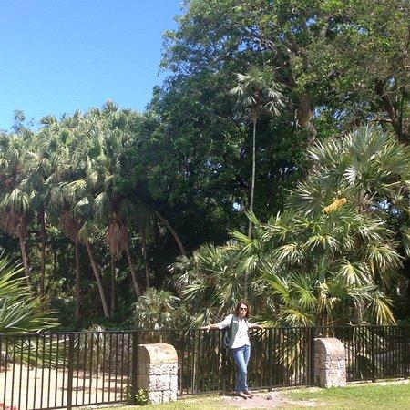 Fairchild Tropical Botanic Garden: photo7.jpg