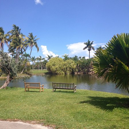 Fairchild Tropical Botanic Garden: photo8.jpg