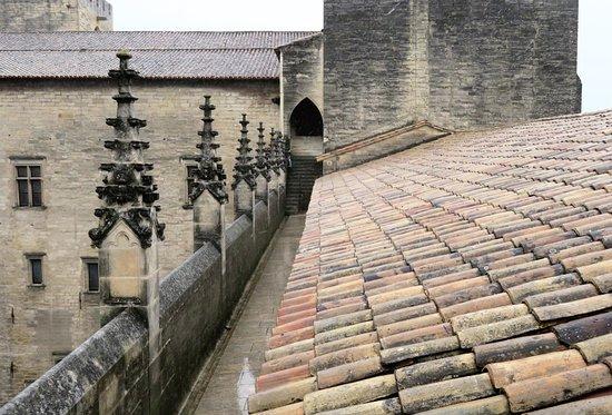 Pope's Palace (Palais des Papes): Roof top