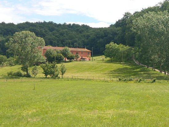 Figline Valdarno, Italien: getlstd_property_photo