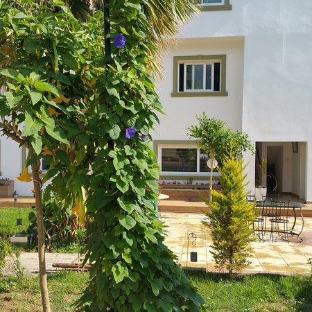 Sun Rays Hotel: Sun Rays Hostel