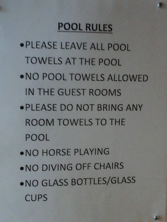 No horses should play by the pool hahaha!