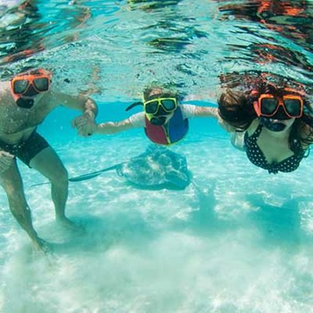 Five Star Charters Cayman: Snorkel in the crystal clear blue waters of the Caribbean with Five Star Charters
