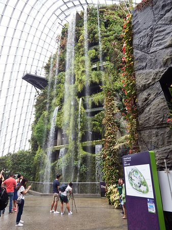 Gardens by the Bay: In the cloud forest