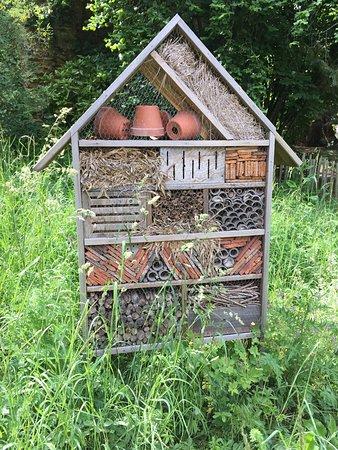 maison des insectes - Picture of Parc des Capucins, Coulommiers