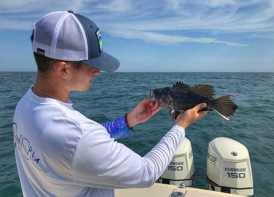 Tyin' Knots Charters: Sea Bass Fishing Trip