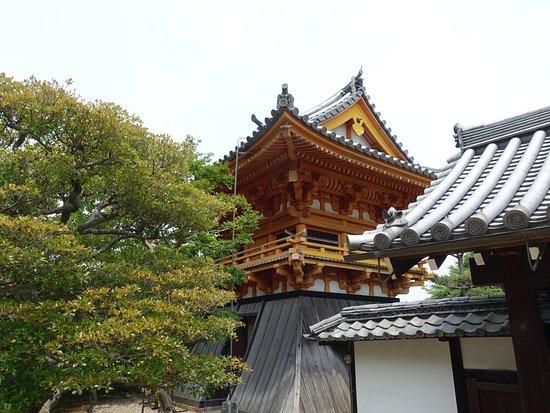 Yawata, ญี่ปุ่น: 緑も鮮やかです
