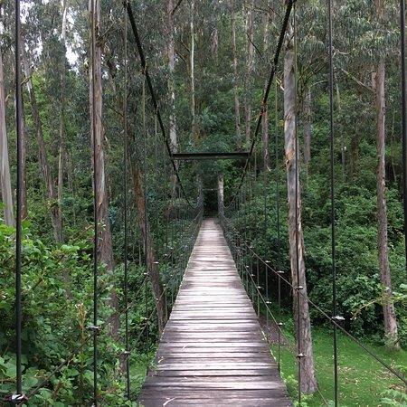 Cascada de Peguche: photo0.jpg