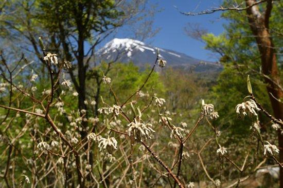 Nishiusuzuka Walking Trail