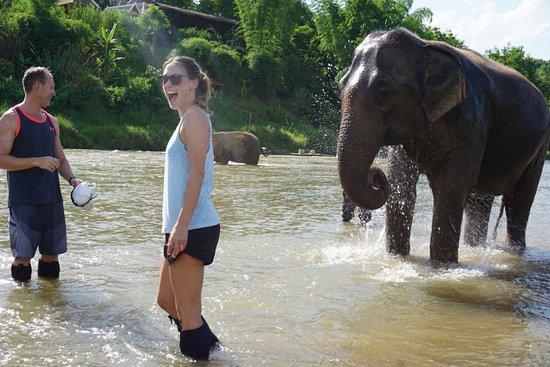 MandaLao Elephant Conservation: Play time