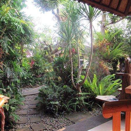Bilde fra Balinese Home Cooking