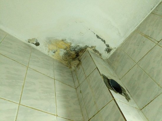 Ảnh về Al Anbat Hotel 1