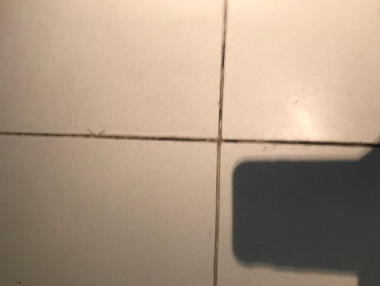 W New York - Times Square : Bathroom tiles with missing grout