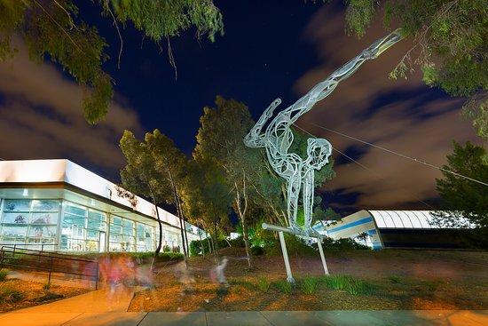 澳大利亚体育学院