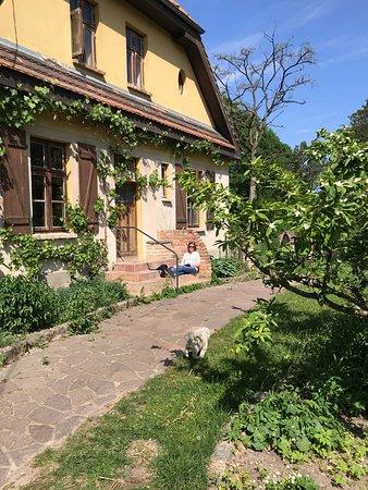 Forsthaus Strelitz Inh. H. Pankratz: Entspannte Tage im Forsthaus Neustrelitz