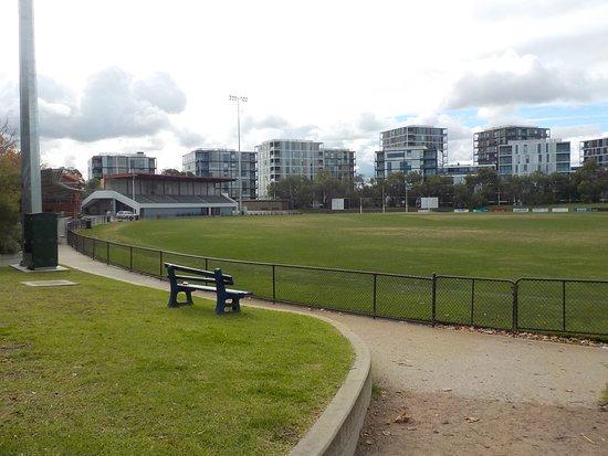 Toorak Park: Playing field