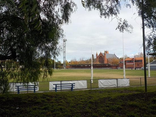 Toorak Park: Seating and playing field