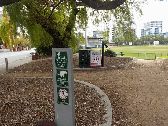 Toorak Park: Street entry and dog rules