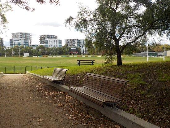 Toorak Park: Shady seating