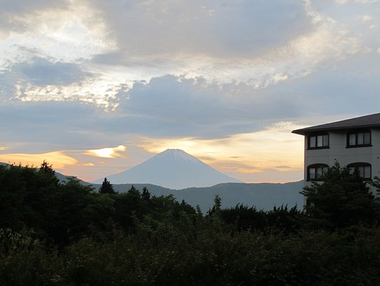 Hotel Green Plaza Hakone: View from the courtyard