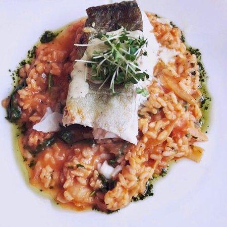 Basilico Italian Restaurant照片