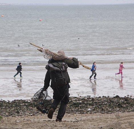 Fore/Adventure: seashore foraging courses in dorset