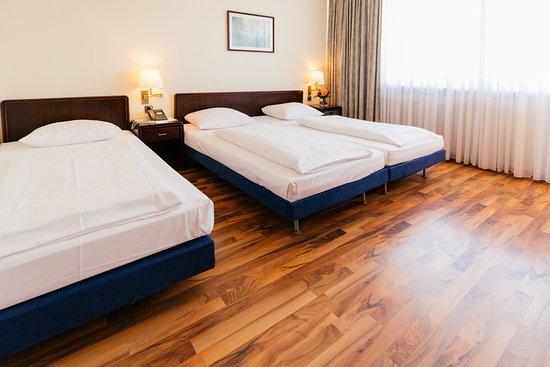 Hotel Excelsior, hoteles en Frankfurt