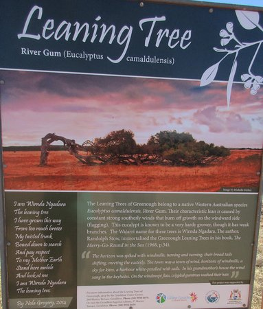 The Leaning Trees: Good signage