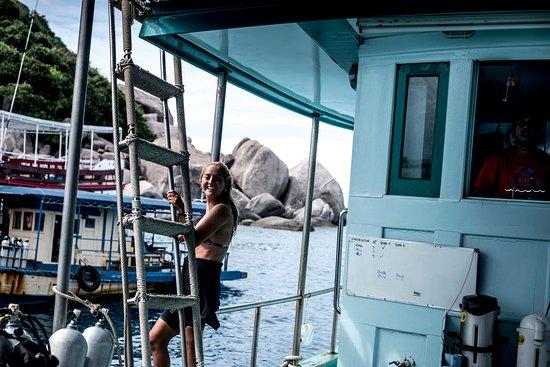 Dpm Diving: Buceando ph: @felidevoto