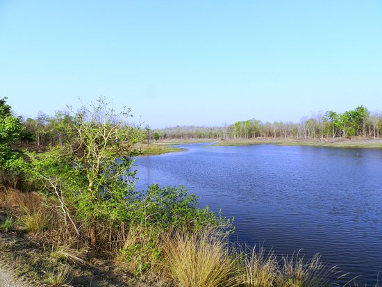 Pench Tiger Reserve: A view of the Water-body