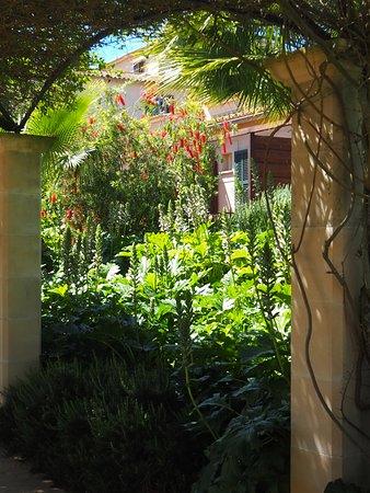 Hilton Sa Torre Mallorca Resort: Jardines