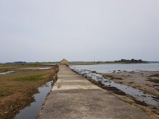 Ile-d'Arz, France: 20180522_094310(0)_large.jpg