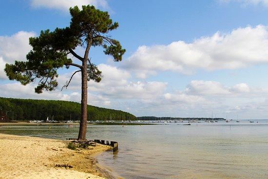 Carcans-Maubuisson, Office de Tourisme Medoc Atlantique: Carcans-Maubuisson - © Djé - 1 moment 1 image