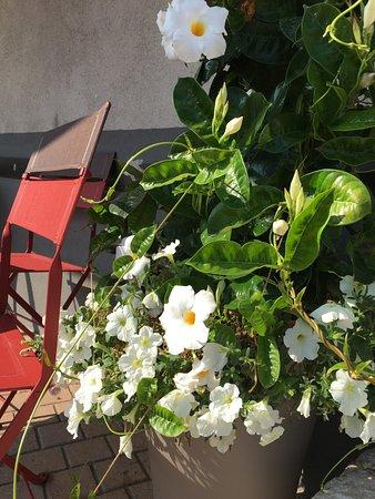 Chateauneuf de Grasse, Γαλλία: le relais fleuri
