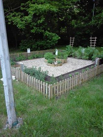 Mercure Gdansk Posejdon: ogródek z ziołami