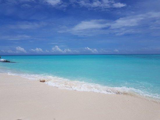 Fushifaru Maldives: 20180521_132839_large.jpg
