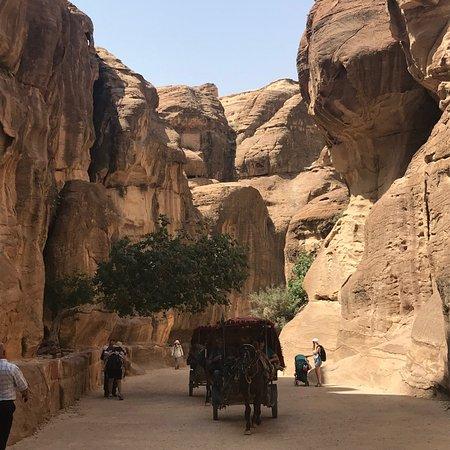 Via Jordan Travel  - Day Tours: Entrance to Petra
