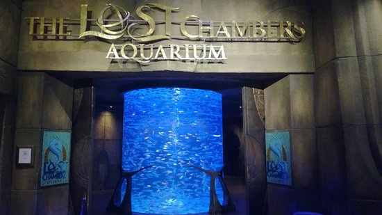 The Lost Chambers Aquarium Φωτογραφία