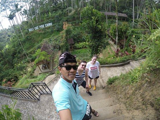 Safe Bali Driver (Ketut Suwenda) - Day Tours: Luwak Coffee Plantation
