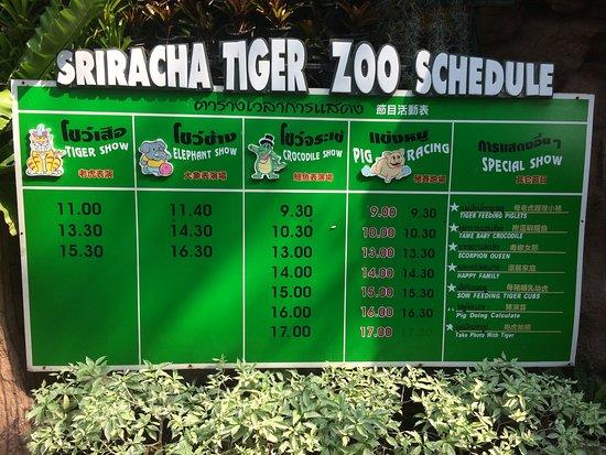 Sriracha Tiger Zoo照片