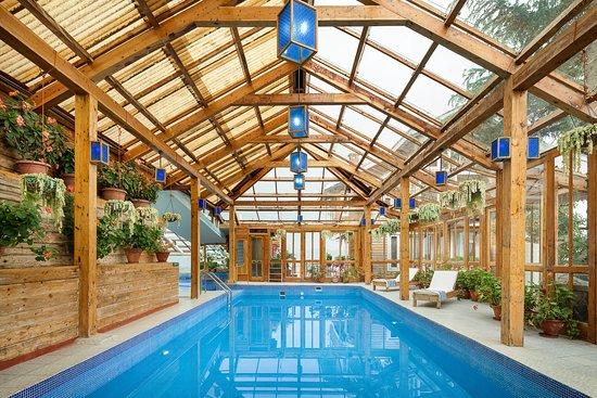 Pool - Picture of Chalets Naldehra - Tripadvisor