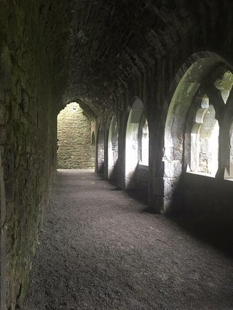 Kilmallock, Irland: inside one of the buildings - a choister