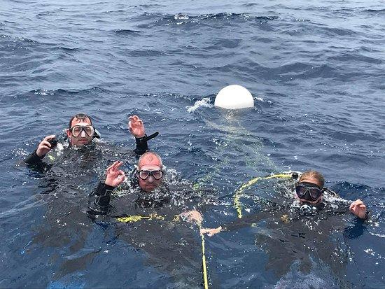 Top Diving Gran Canaria: Deep Dive