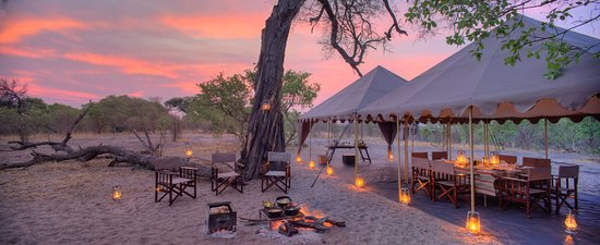 Chobe National Park Image