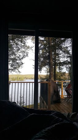 Purdy, Canada: View from our bed