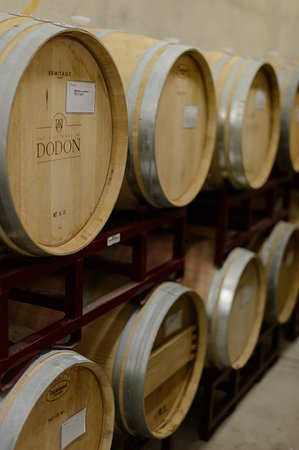 The Vineyards at Dodon: The state of the art cellar sits under the tasting room