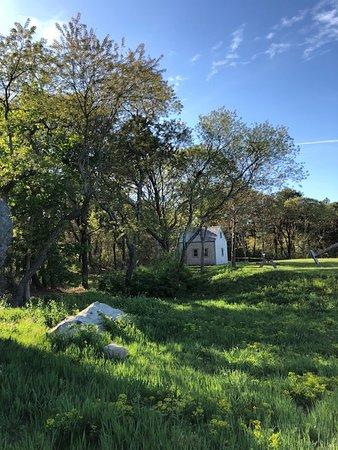 Harris-Black House and Higgins Farm Windmill照片
